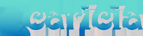 Caricia Home Fashions Logo